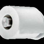 Offensichtlich Toilettenpapier (Symbolfoto)